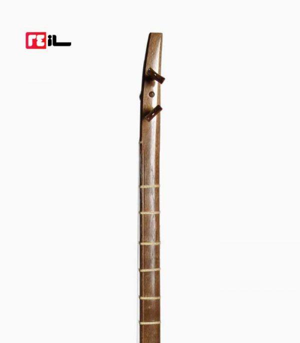 تنبور سیامک میرزاپور