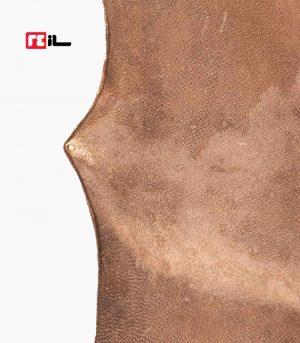 پوست تنبک شتر