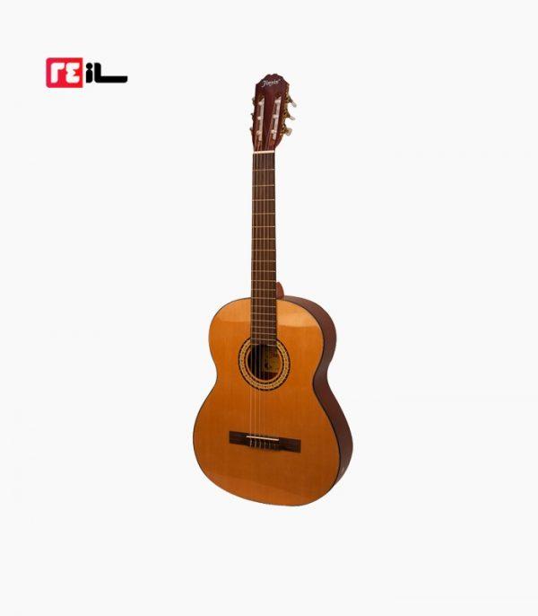 گیتار Jin Yin JY-E150